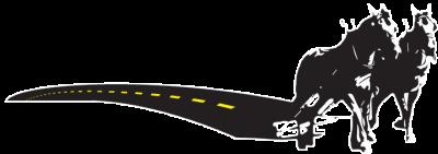 shattuck horses logo